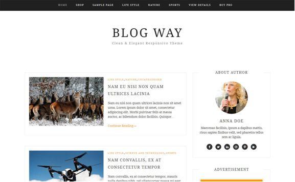 Blog Way WordPress Theme