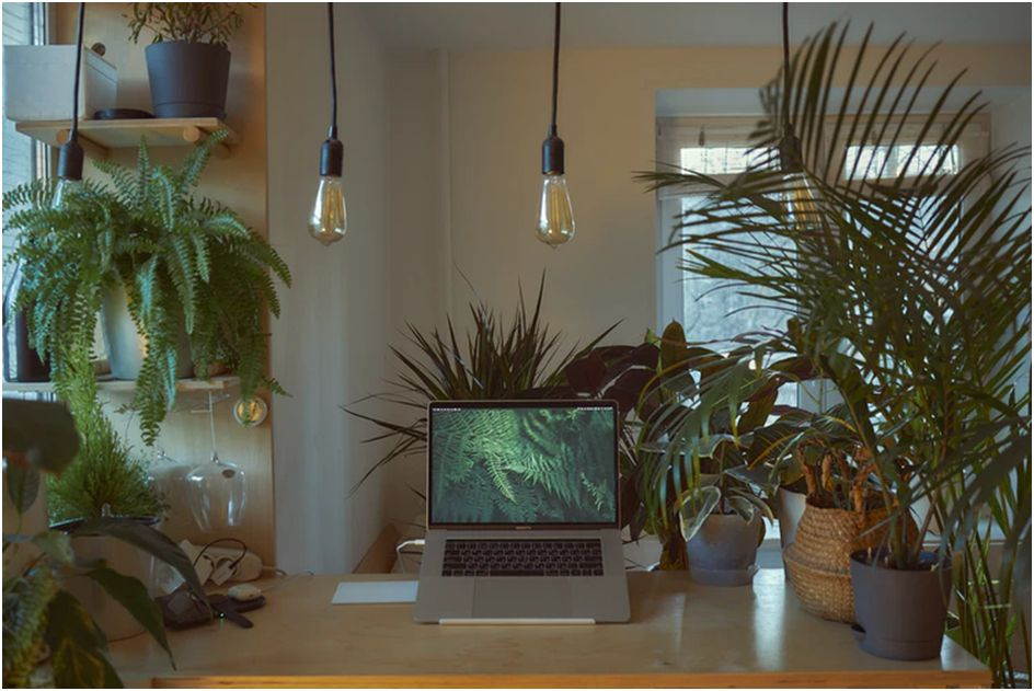 Home Office Upgrades You Need If You Work Remotely